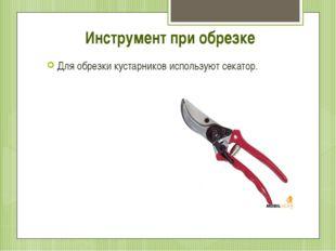 Инструмент при обрезке Для обрезки кустарников используют секатор.