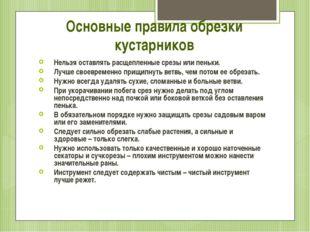 Основные правила обрезки кустарников Нельзя оставлять расщепленные срезы или