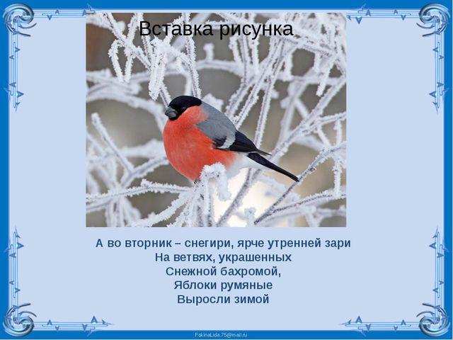 А во вторник – снегири, ярче утренней зари На ветвях, украшенных Снежной бахр...