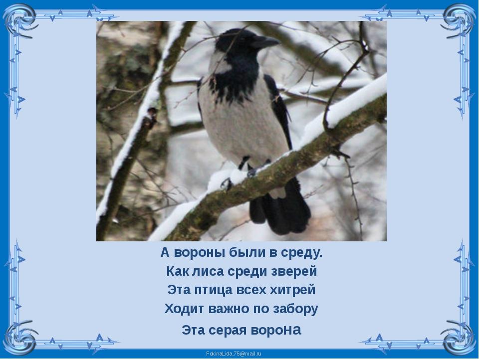 А вороны были в среду. Как лиса среди зверей Эта птица всех хитрей Ходит важн...