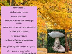 Золотая осень. Люблю тебя , осень! За что, понимаю… За желтых листочков летаю