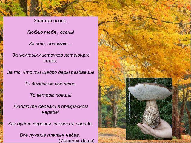 Золотая осень. Люблю тебя , осень! За что, понимаю… За желтых листочков летаю...