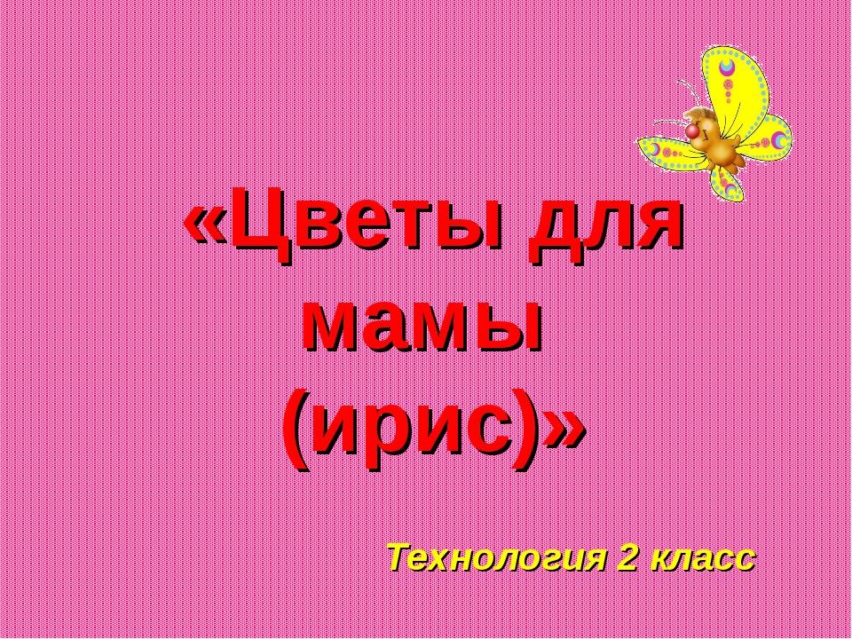 «Цветы для мамы (ирис)» Технология 2 класс