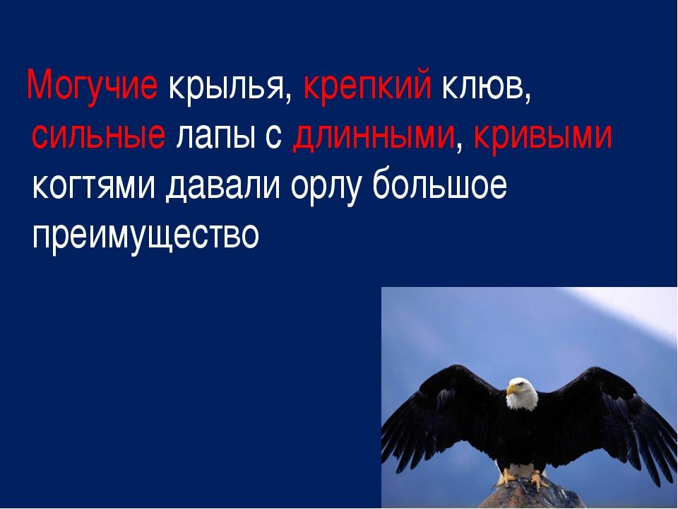 Могучие крылья, крепкий клюв, сильные лапы с длинными, кривыми когтями давал...