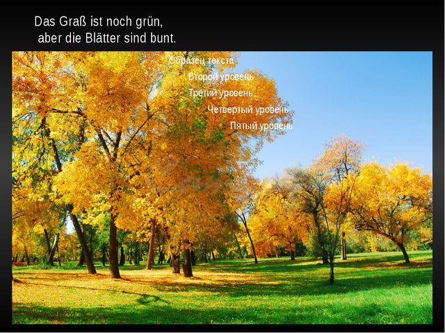 Das Graß ist noch grün, aber die Blätter sind bunt.