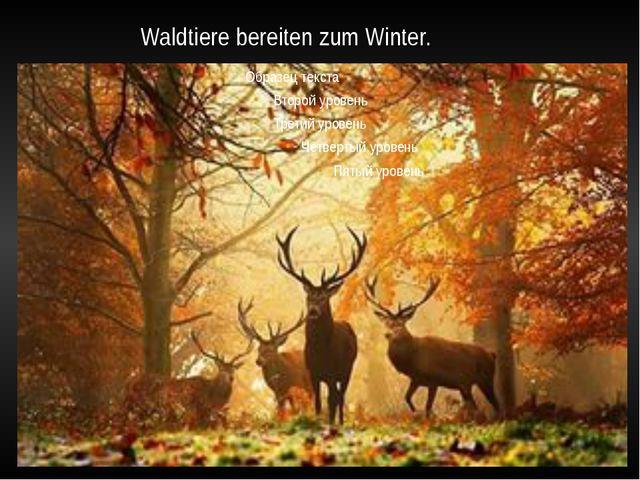 Waldtiere bereiten zum Winter.