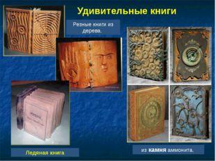 Удивительные книги Ледяная книга Резные книги из дерева. из камня аммонита.