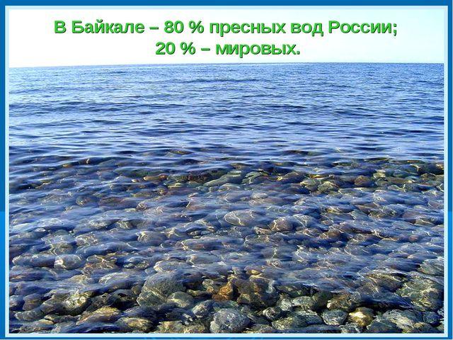 В Байкале – 80 % пресных вод России; 20 % – мировых.