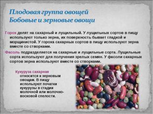 Кукуруза сахарная относится к зерновым овощам. В пищу используют початки куку