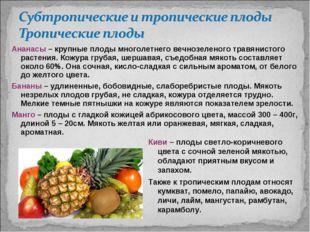 Ананасы – крупные плоды многолетнего вечнозеленого травянистого растения. Кож