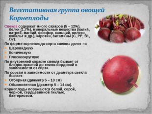 Свекла содержит много сахаров (5 – 12%), белки (1,7%), минеральные вещества (