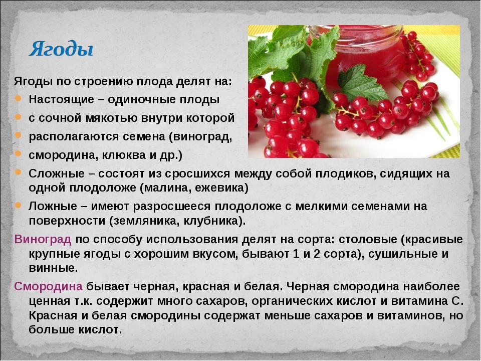 Ягоды по строению плода делят на: Настоящие – одиночные плоды с сочной мякоть...