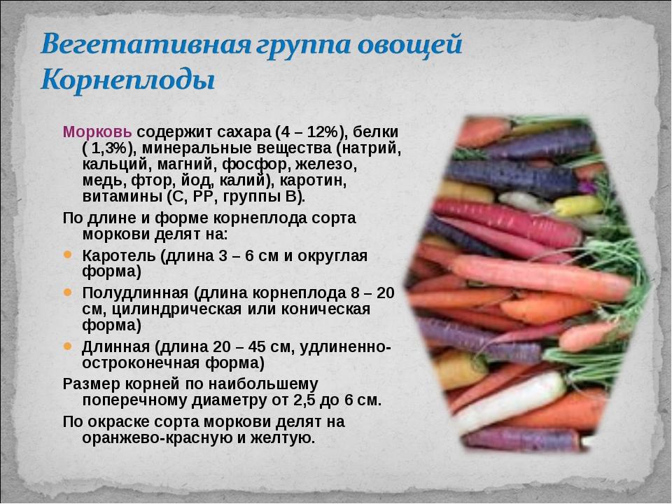Морковь содержит сахара (4 – 12%), белки ( 1,3%), минеральные вещества (натри...
