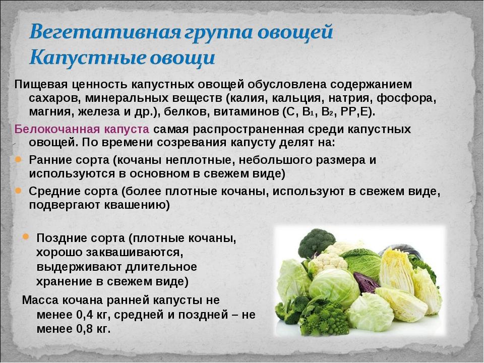 Пищевая ценность капустных овощей обусловлена содержанием сахаров, минеральны...
