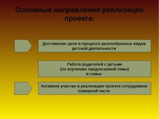 Основные направления реализации проекта: Достижение цели в процессе разнообр