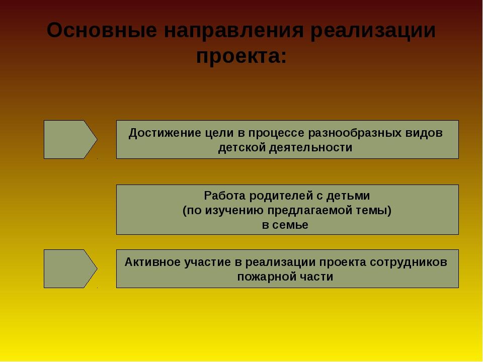 Основные направления реализации проекта: Достижение цели в процессе разнообр...