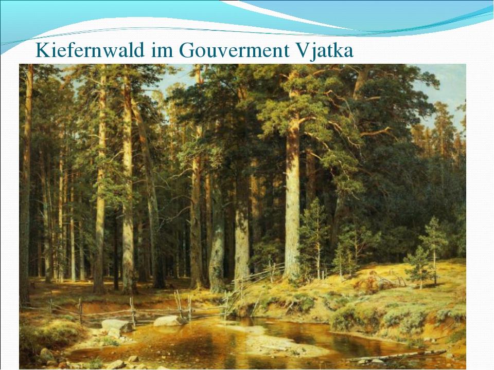 Kiefernwald im Gouverment Vjatka