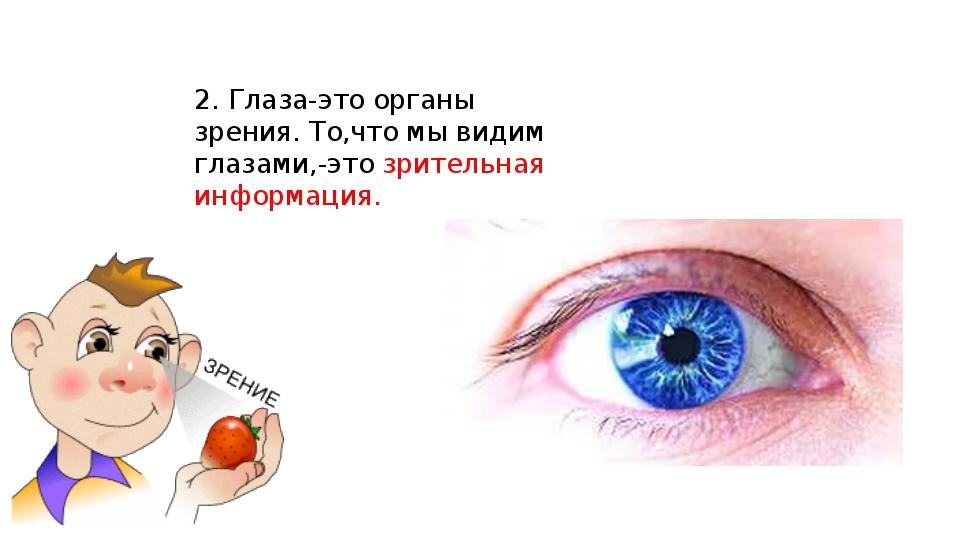 2. Глаза-это органы зрения. То,что мы видим глазами,-это зрительная информация.