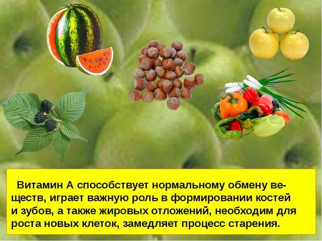Витамин А способствует нормальному обмену ве- ществ, играет важную роль в фо...