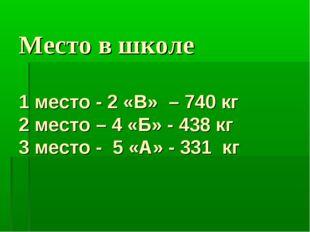 Место в школе 1 место - 2 «В» – 740 кг 2 место – 4 «Б» - 438 кг 3 место - 5 «