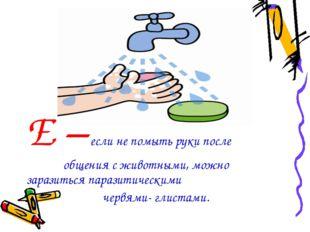 Е – если не помыть руки после общения с животными, можно заразиться паразитич