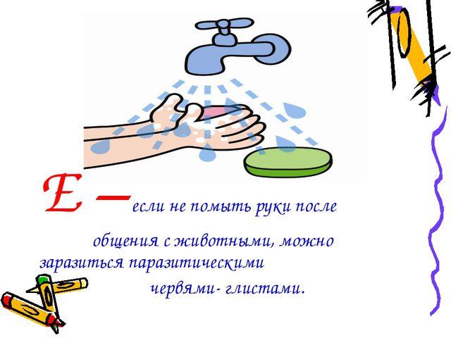 Е – если не помыть руки после общения с животными, можно заразиться паразитич...