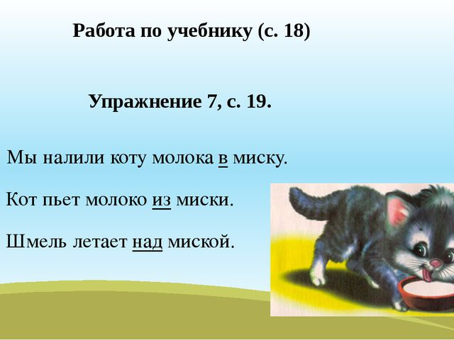 Работа по учебнику (с. 18) Упражнение 7, с. 19. Мы налили коту молока в миску...