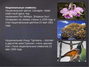 Национальные символы. Национальный цветок: Орхидея, также известный здесь под