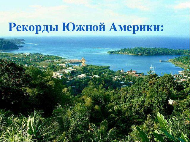 Магелланов туко-туко