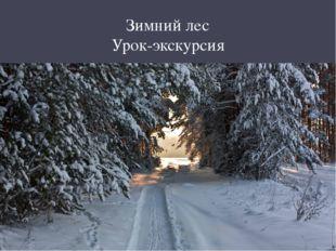 Зимний лес Урок-экскурсия