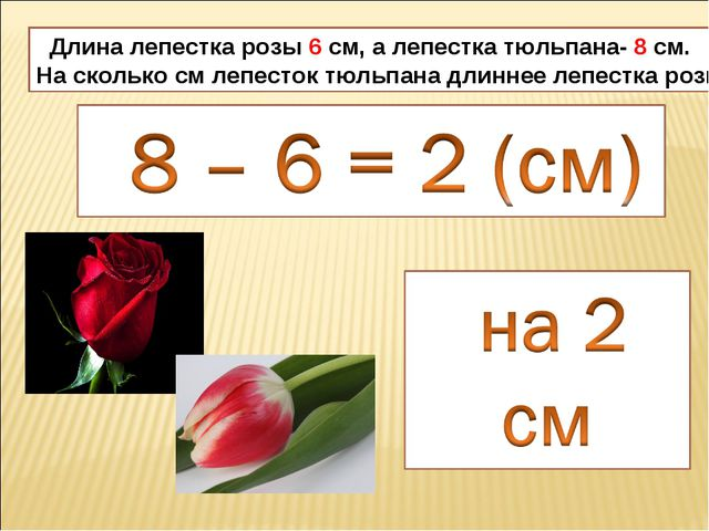 Длина лепестка розы 6 см, а лепестка тюльпана- 8 см. На сколько см лепесток...