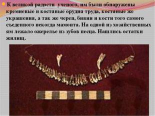 К великой радости ученого, им были обнаружены кремневые и костяные орудия тру
