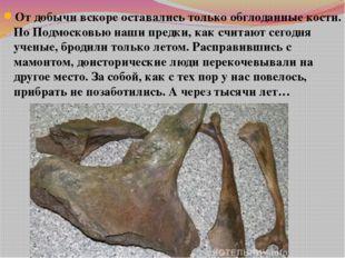 От добычи вскоре оставались только обглоданные кости. По Подмосковью наши пре