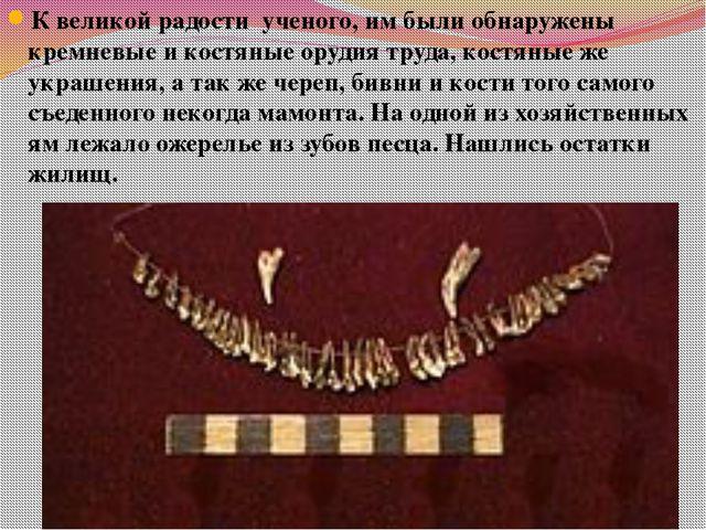 К великой радости ученого, им были обнаружены кремневые и костяные орудия тру...
