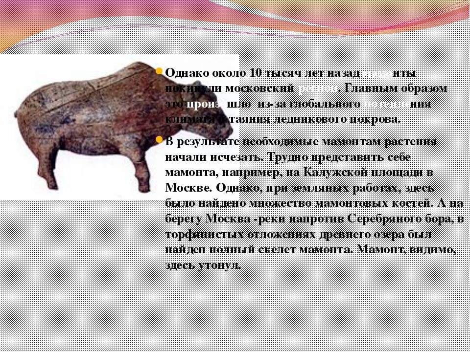Однако около 10 тысяч лет назад мамонты покинули московский регион. Главным о...