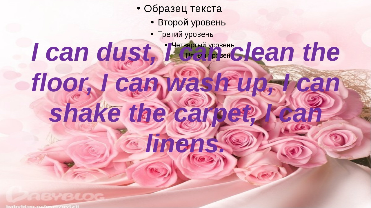 I can dust, I can clean the floor, I can wash up, I can shake the carpet, I c...