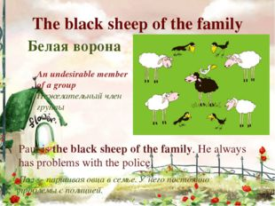 The black sheep of the family Белая ворона An undesirable member of a group Н