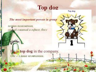 Top dog хозяин положения, самый главный в офисе, босс The most important pers