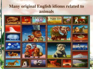 Many original English idioms related to animals