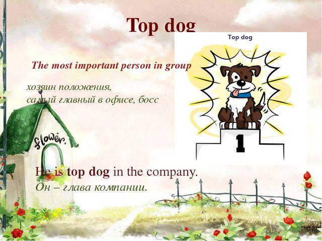 Top dog хозяин положения, самый главный в офисе, босс The most important pers...