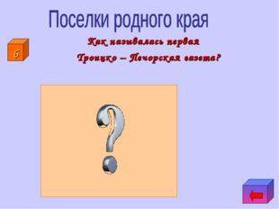 Как называлась первая Троицко – Печорская газета? 6