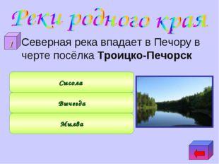 Северная река впадает в Печору в черте посёлка Троицко-Печорск Мылва Вычегда