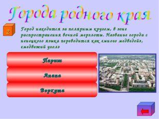 Город находится за полярным кругом, в зоне распространения вечной мерзлоты.