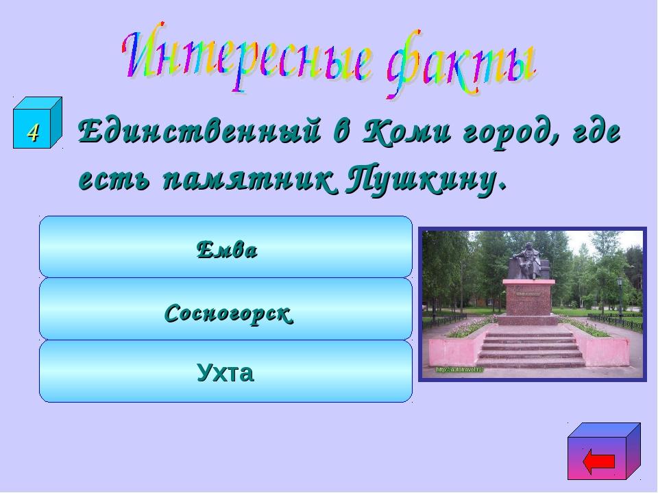 Единственный в Коми город, где есть памятник Пушкину. Ухта Сосногорск Емва 4