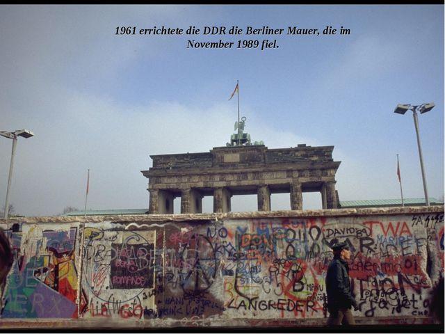 1961 errichtete die DDR die Berliner Mauer, die im November 1989 fiel.