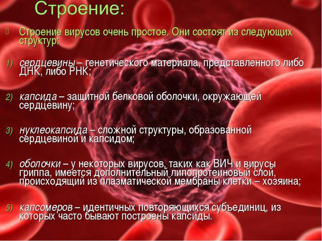 Строение вирусов очень простое. Они состоят из следующих структур: сердцевин...