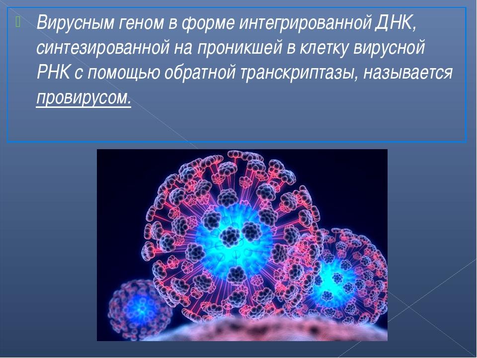 Вирусным геном в форме интегрированной ДНК, синтезированной на проникшей в кл...