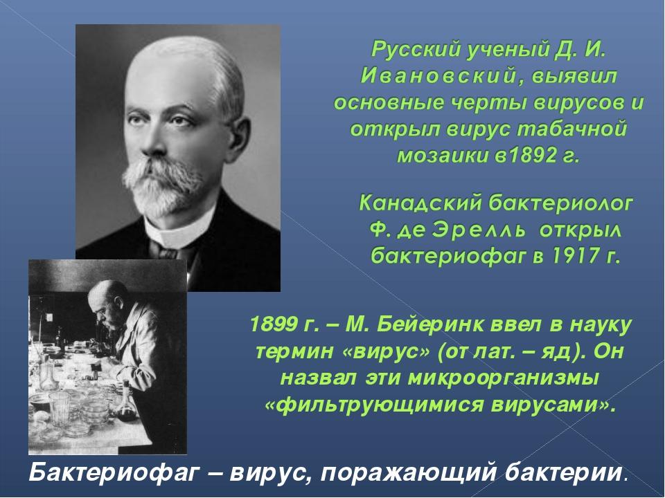 Бактериофаг – вирус, поражающий бактерии. 1899 г. – М. Бейеринк ввел в науку...