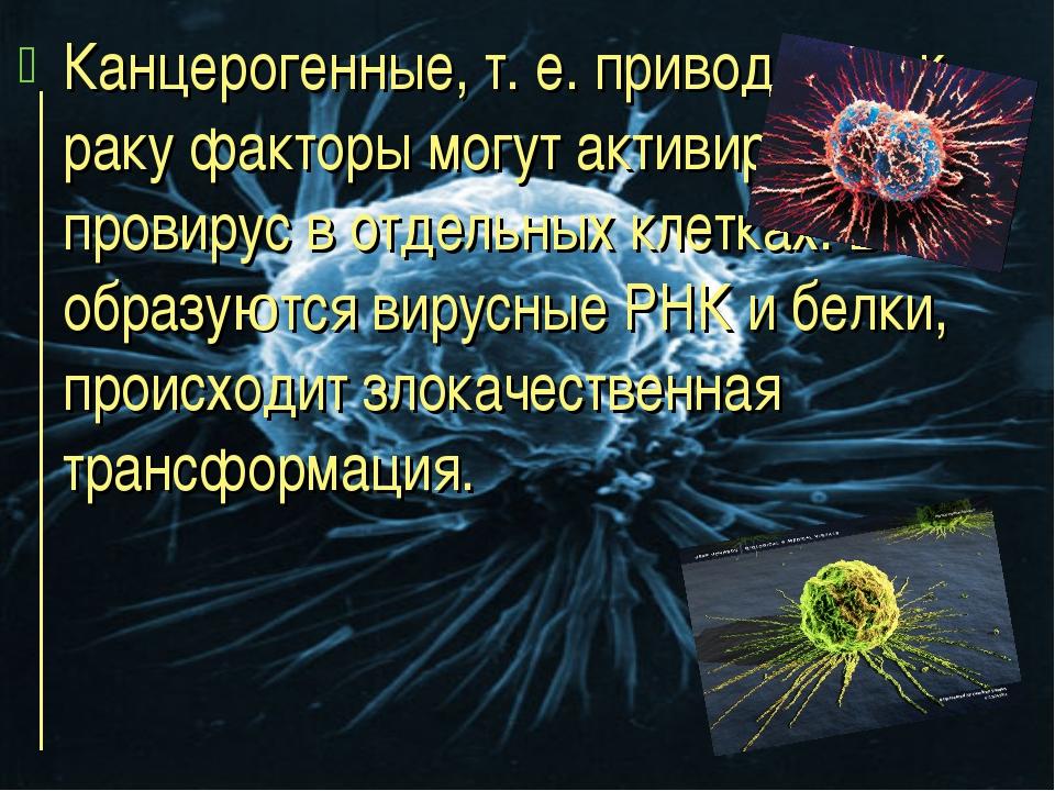Канцерогенные, т. е. приводящие к раку факторы могут активировать провирус в...