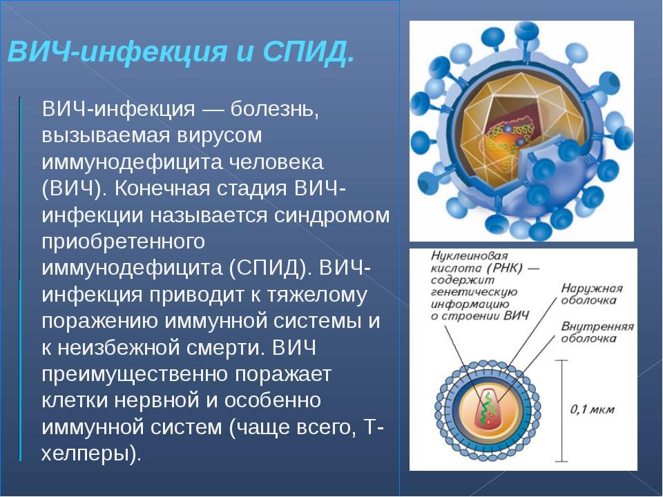 ВИЧ-инфекция и СПИД. ВИЧ-инфекция — болезнь, вызываемая вирусом иммунодефицит...
